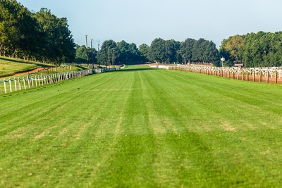 Horse Race Track Ground Condition