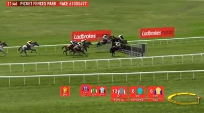Horses Racing Jumps