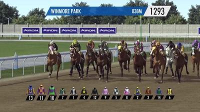 Horse Racing Flats