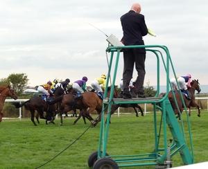 Starter Horse Race