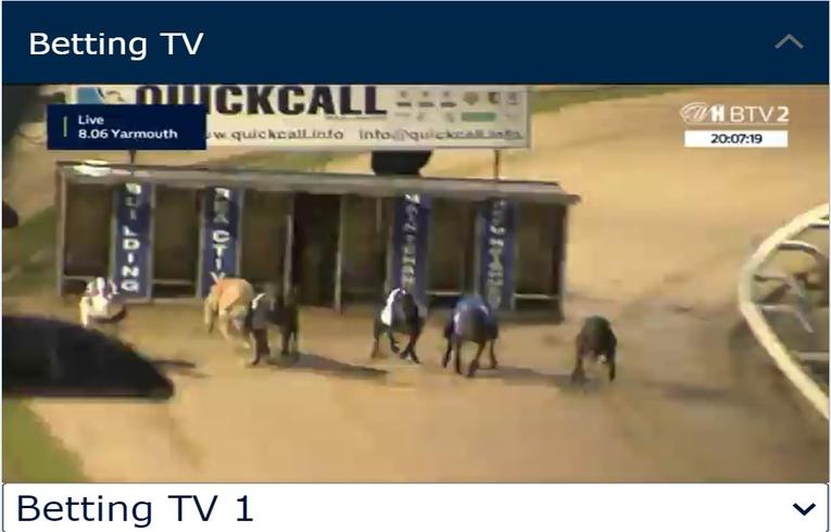 Greyhound Live Betting